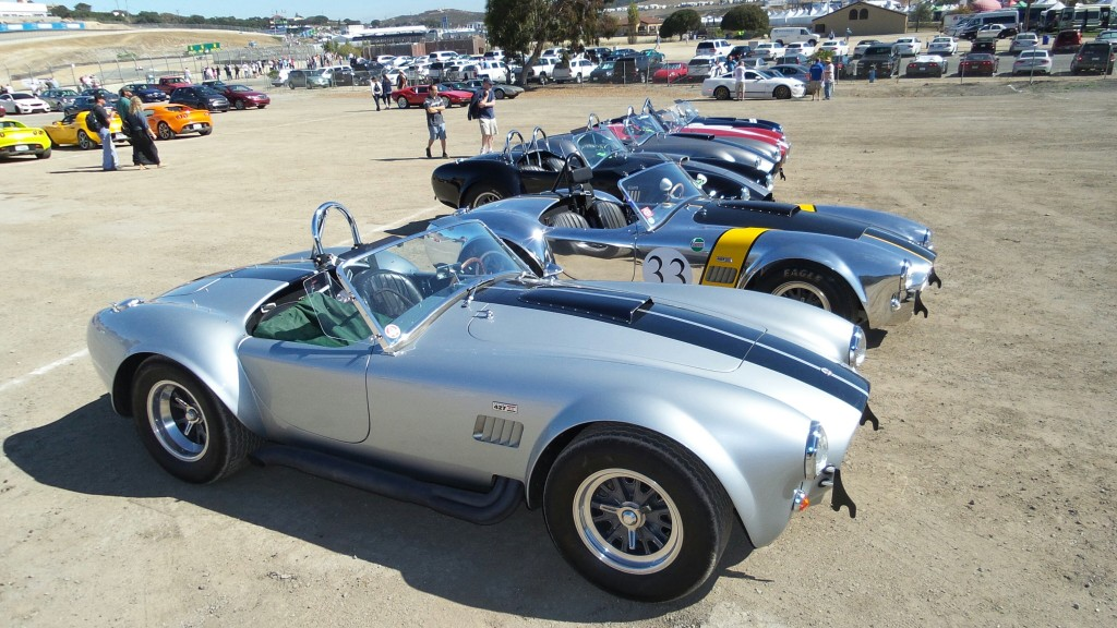 Shelby-Cobra-Gathering